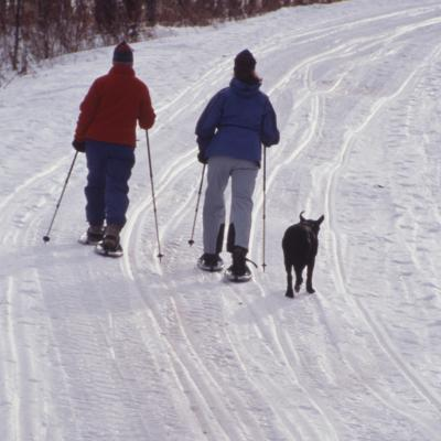 crosscountry skiers