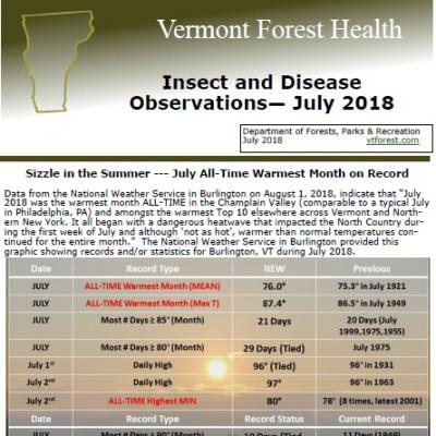 july forest health observations