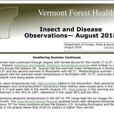 Front page of August Forest Health Update