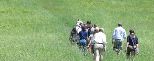 group walks through field